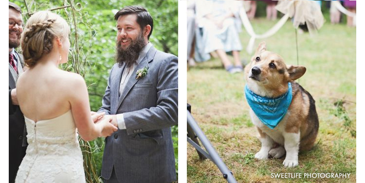 couple exchanging wedding vows with dog watching